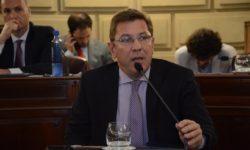 BORLA PIDIO INFORMES AL PODER EJECUTIVO SOBRE LAS ACCIONES PARA PREVENIR AVANCES DEL CORONAVIRUS Y EL DENGUE.